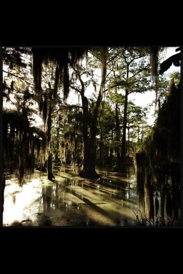 141 Best Ragin Cajuns Images On Pinterest Louisiana