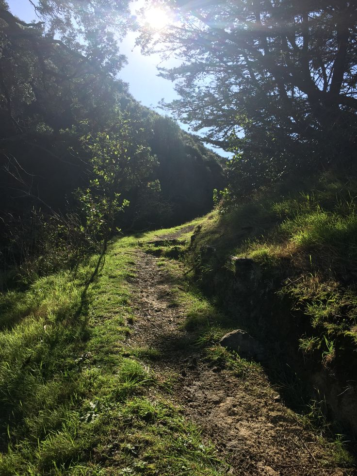 Getting actually lost in Waheke Island, NZ