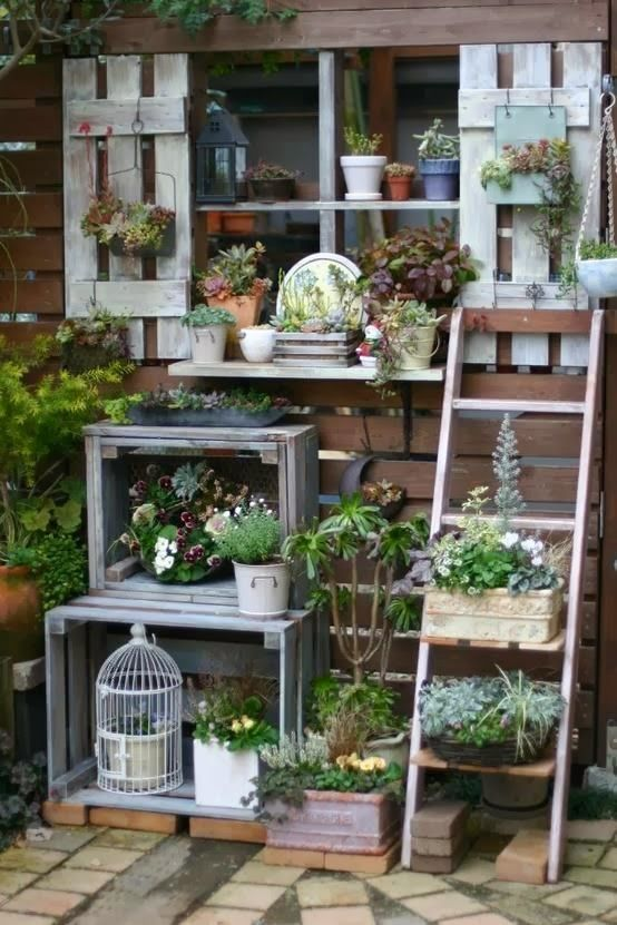 in flower bed against house pallet cabinet and then the ladder is great decor to stack pots diy shelves for terraces and backyards