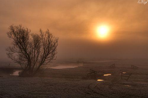 Sereniteit langs de N11© Ruud van Dijk (Panoramio)