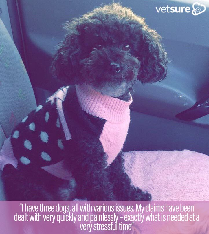 Pretty In Pink Mia S Wonderful Review Thursdaymotivation