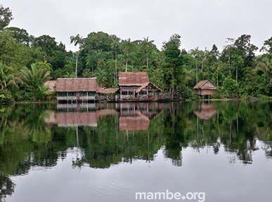 Visita la reserva Marashá en el Amazonas! #Viajes Descubre la Colombia profunda con Mambe.org!