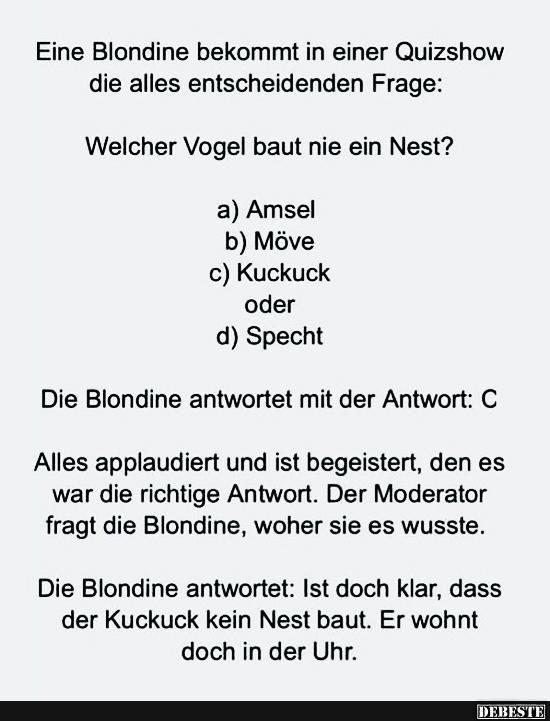 Eine Blondine bekommt in einer Quizshow die alles entscheidenen