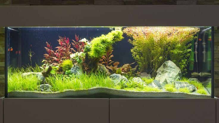 Aquarium Sideboard #Aquarium #Süßwasseraquarium #Aquaristik - deko fur aquarium selber machen
