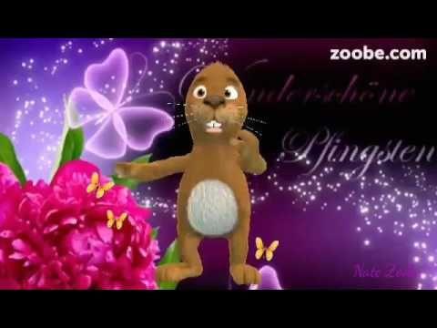 Liebe Grüße ❤ sende ich dir zum PfingstfestIch wünsche dir eine fröhliche Zeit❤ - YouTube