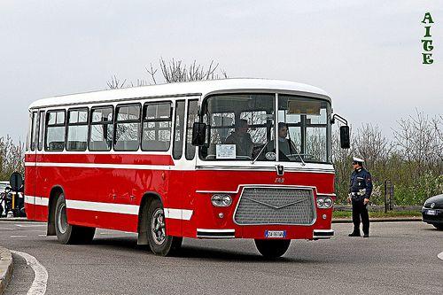 FIAT 309 - A.I.T.E.