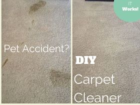 DIY 2-Ingredient Carpet Cleaner with Odor Remover |Overthrow Martha