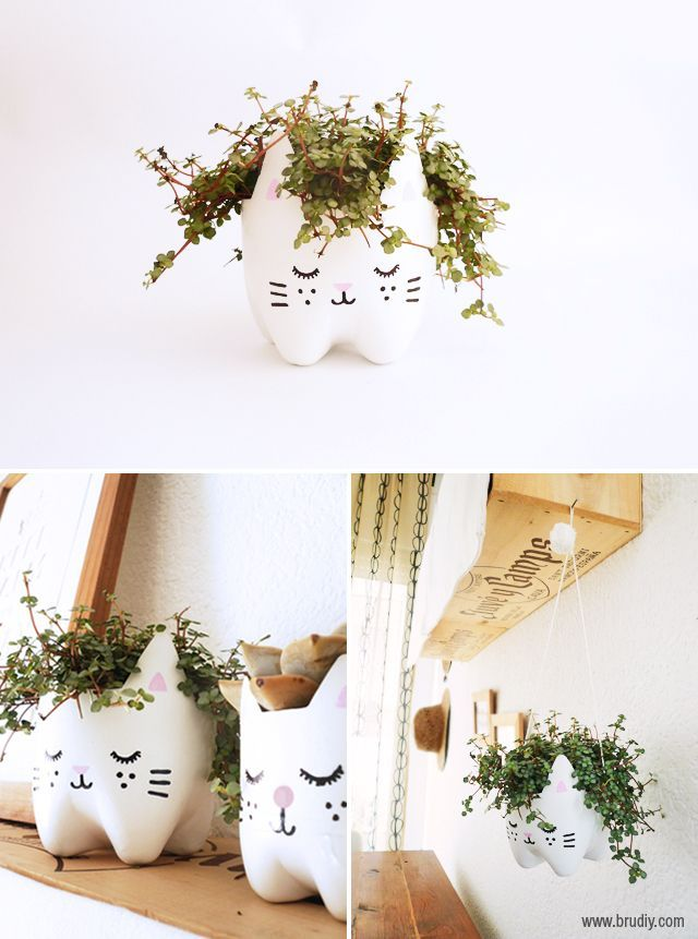 This kitty planter is made out of a soda bottle