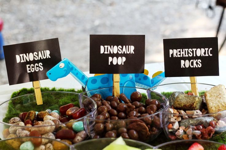 ... party for Tino on Pinterest  Dinosaur party, Birthday party ideas and