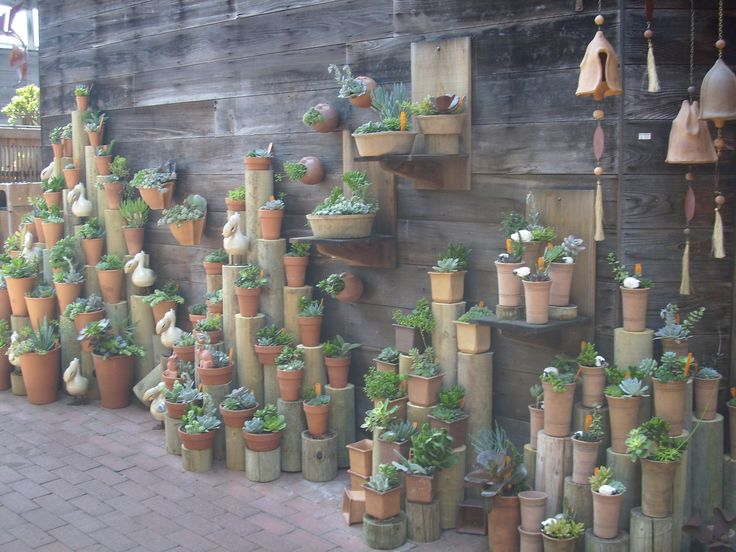 Saw this display of succulents at a nursery in Morro Bay, CA a few years ago and fell in love.