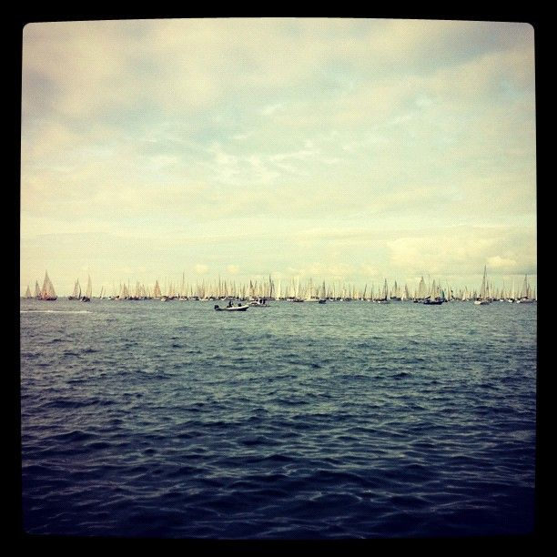 Barcolana, Trieste