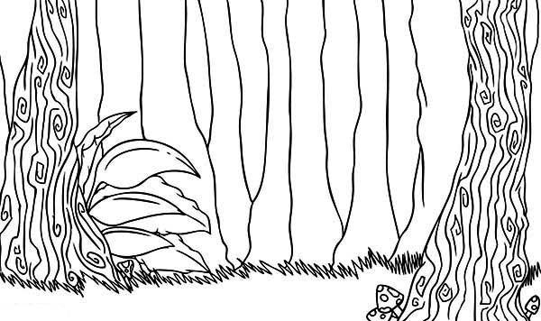 forest of trees coloring pages - photo#27