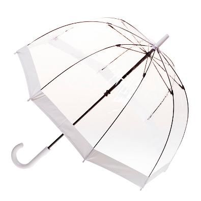 Clear Umbrella - Silver Trim