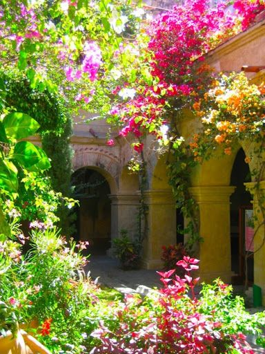 XO Gorgeous Bouganvilla!Courtyards Gardens, Secret Gardens, Dreams, Colors, Mexico, Arches, Beautiful, Columns, Flower Gardens