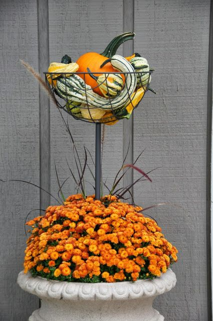 Infuse With Liz: Mum and Pumpkin Topiary with Gourds