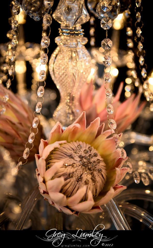 Greg Lumley Cape Town Photography Gallery -  stunning flower bouquet with Indiginous King Proteas and crystals.