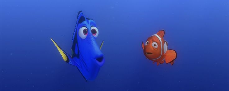 dory and marlin relationship quiz