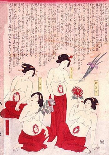 japanese medical drawings depicting 10 months of the pregnancy period, physician/artist unknown