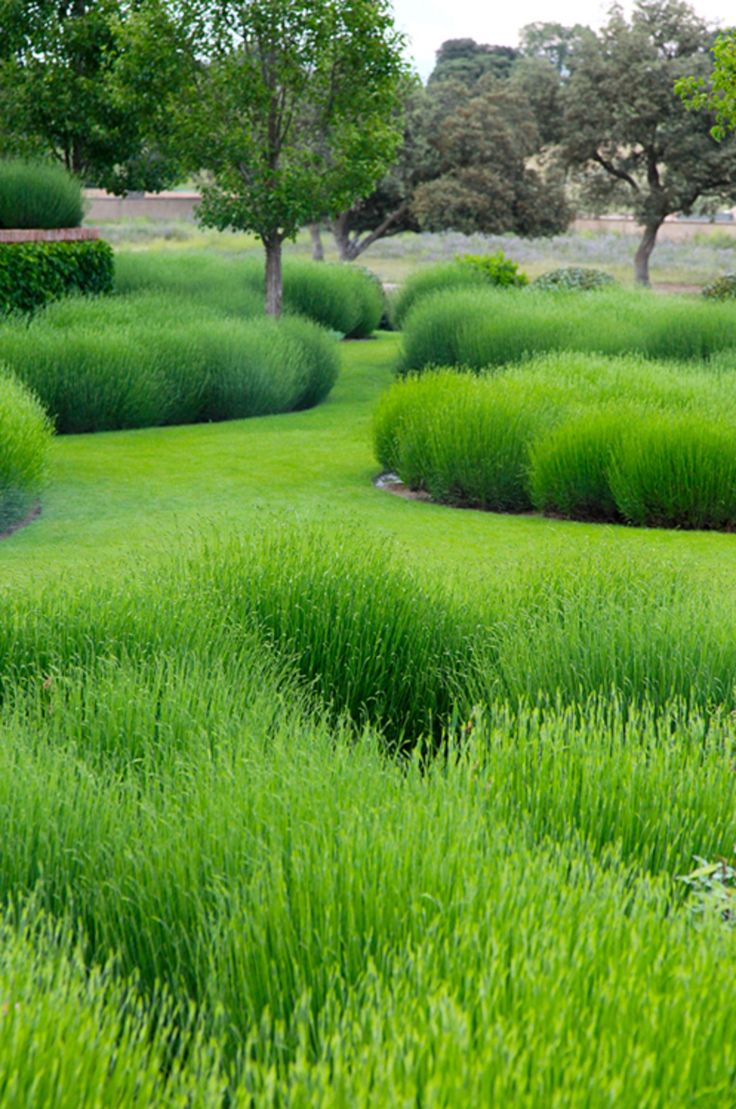 Captivating 90 Green Garden Design Decorating Inspiration Of 20
