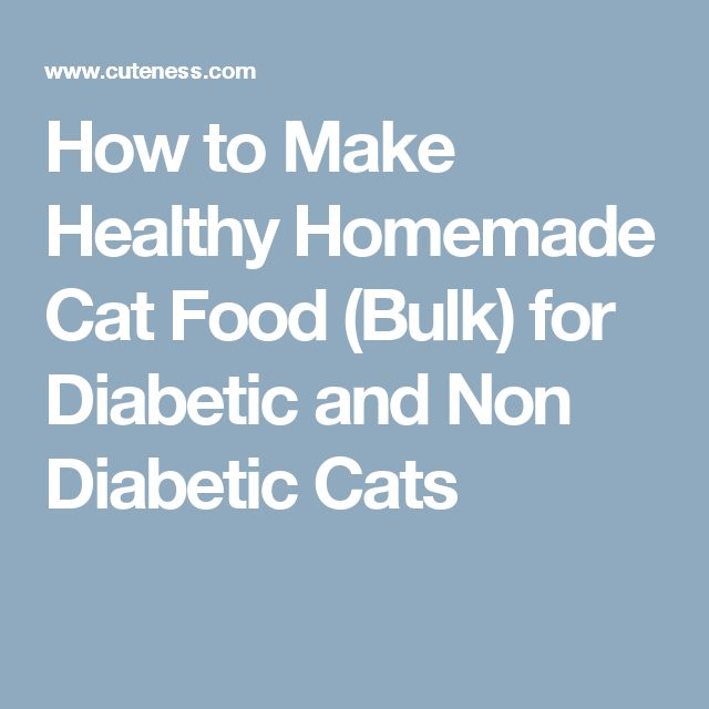 Best Canned Foods For Diabetic Dogs