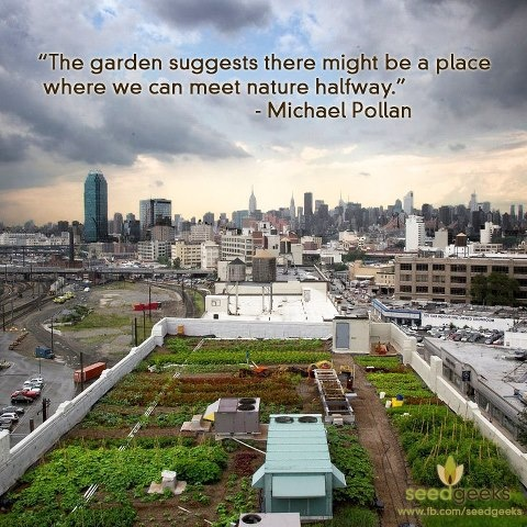 """The garden suggests there might be a place where we can meet nature halfway."" -Michael Pollan"
