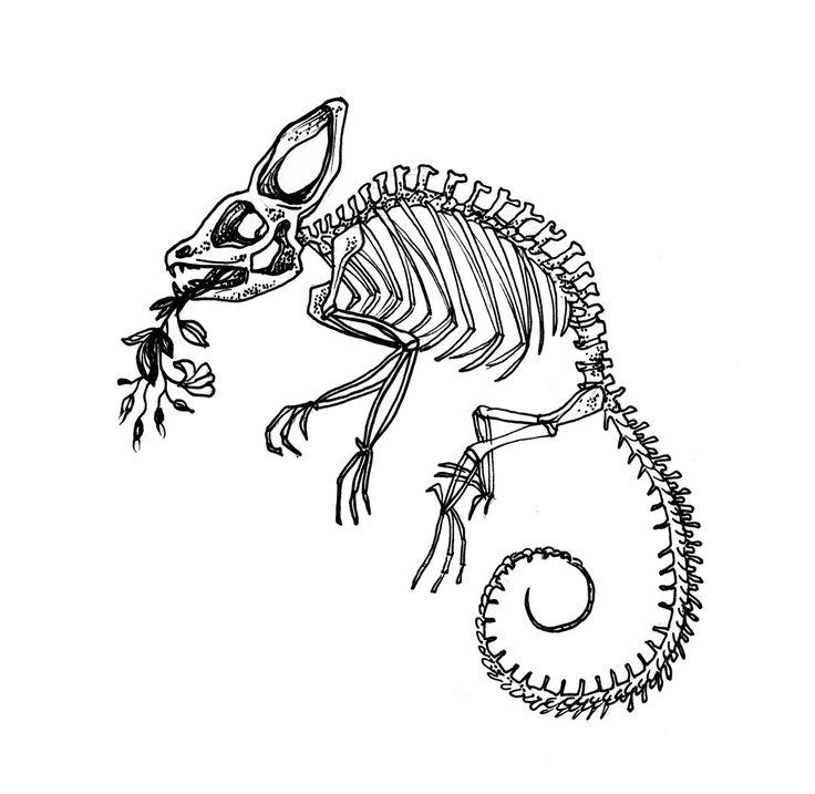 Jackson Chameleon Tattoos: 1000+ Ideas About Chameleon Tattoo On Pinterest