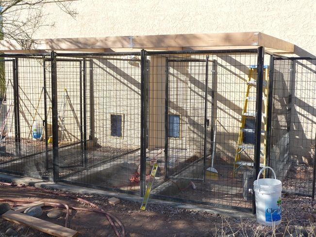 diy dog kennels - Dog Kennel Design Ideas