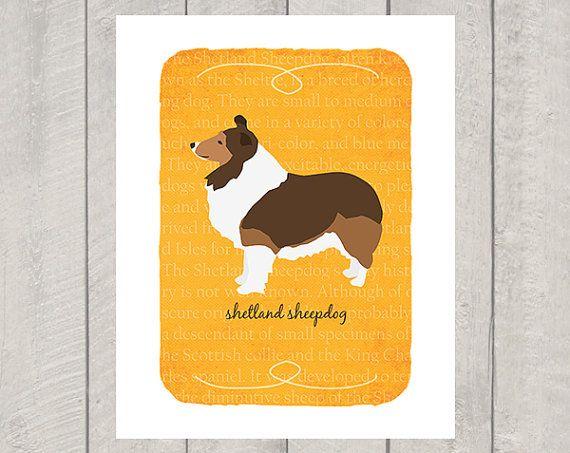 Shetland Sheepdog Breed Custom Dog Art Print by HappyTailPrints