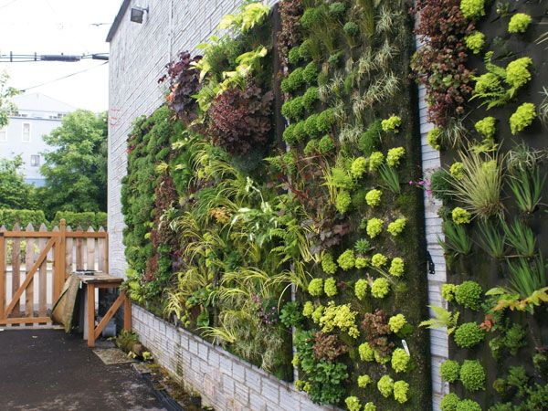 Wall gardens to hide ugly walls or just to have outdoor art!