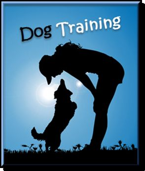 Hot Dog Training Stuff - Click Me!