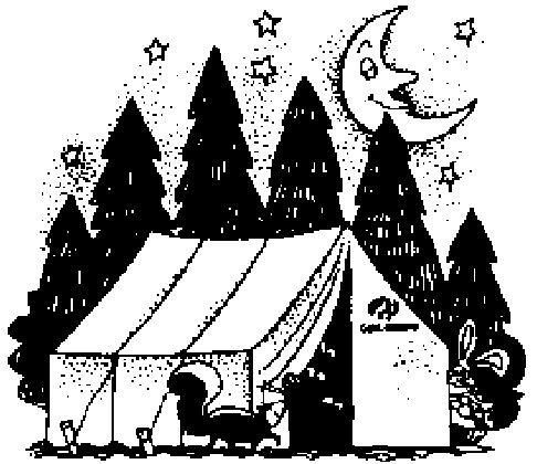 Troop 250 - Basic 8 Camping Skills Page
