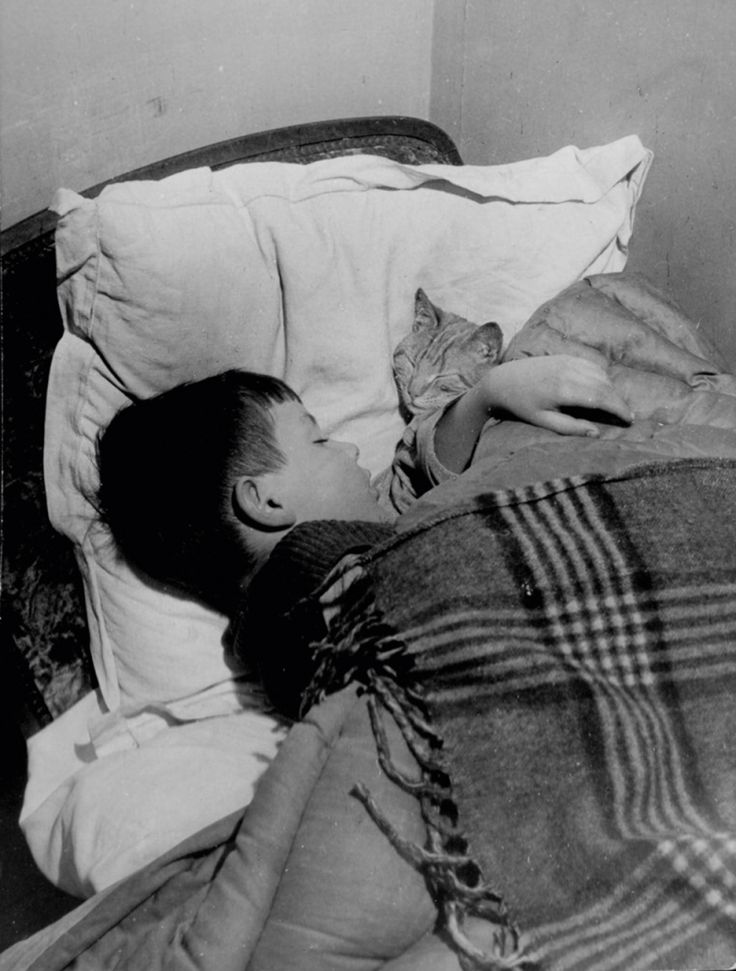 Willy Ronis. Vincent and the cat, Gordes 1947