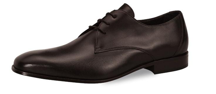 Schoenen : Tom bruin