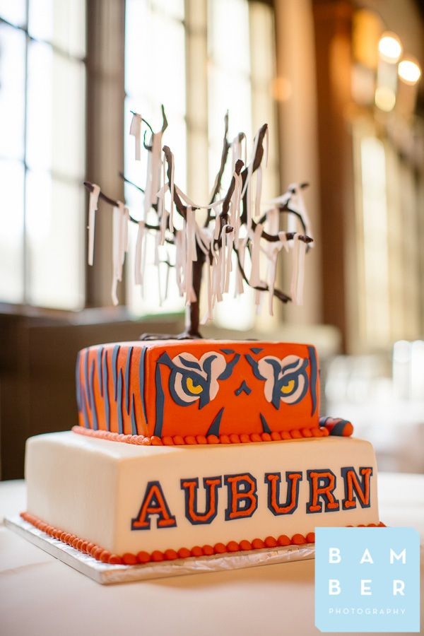 chattanooga weddings, fairyland club, bamber photography, grooms cake, auburn grooms cake, auburn, wareagle, auburn wedding cake