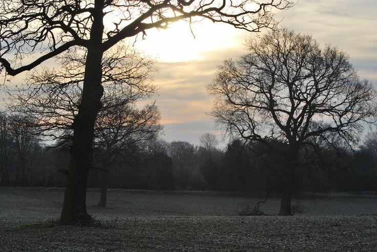 King's Walden, Hertfordshire, UK