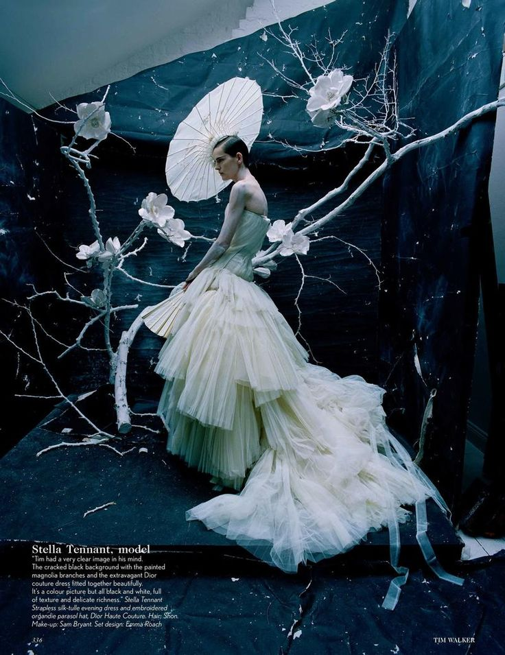 The Creative Review (British Vogue) Stella Tenant in Dior by Tim Walker