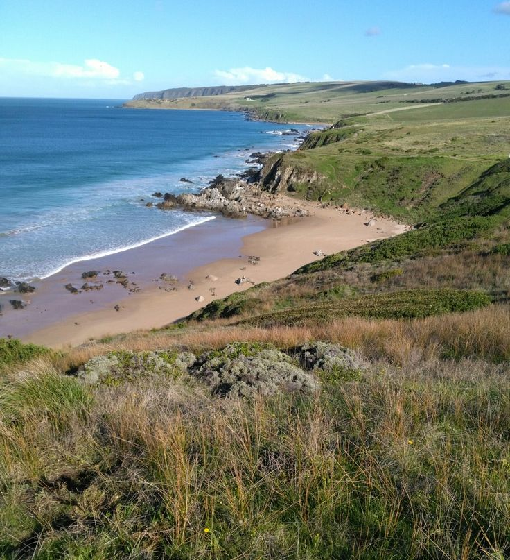 Looking down from the Bluff to the beach. Near Victor Harbor, South Australia