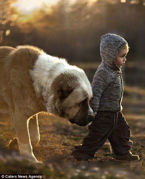 Vanya walks with a dog