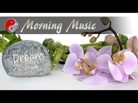 Positive Energy Music: Morning Meditation Music For Stress Relief, Positive Thinking & Dreaming 2017 - http://LIFEWAYSVILLAGE.COM/stress-relief/positive-energy-music-morning-meditation-music-for-stress-relief-positive-thinking-dreaming-2017-2/