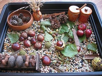 "Fall Sensory Tub-- Birdseed as ""base"", with things like bark and acorns and pine cones and twigs and real leaves and real nuts (as long as there are no allergies!). I love the squirrel toys, and think that having places to ""hide"" the nuts would make this sensory activity even more awesome! Maybe in a fake, hollowed-out ""tree""..."