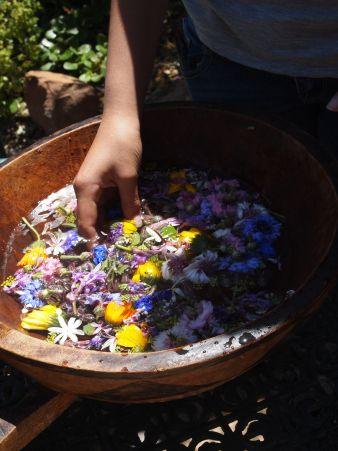 Flower bath at Forage Harvest Feast