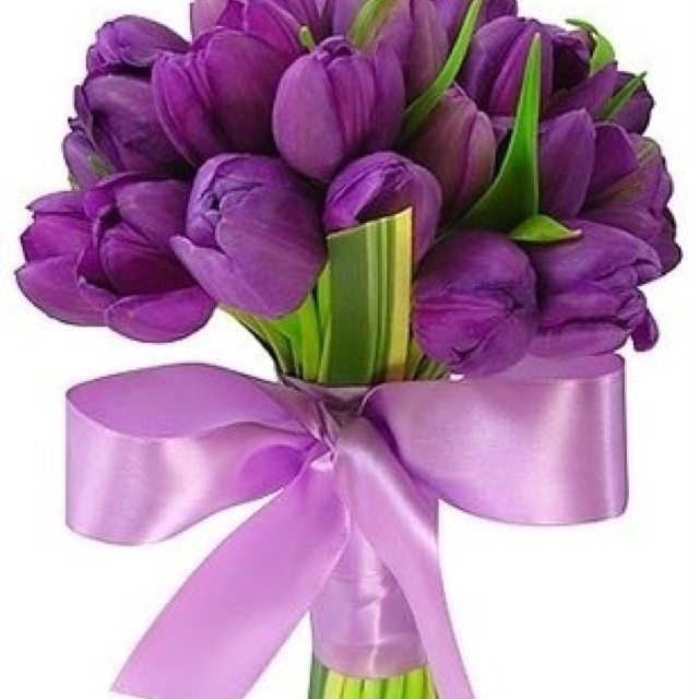 purple tulip bouquet with leaves and ribbon tulip