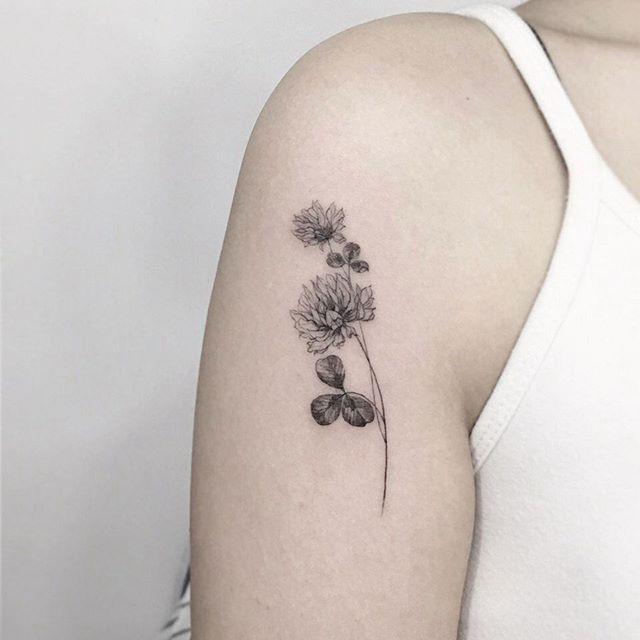 clover  flower ☘…