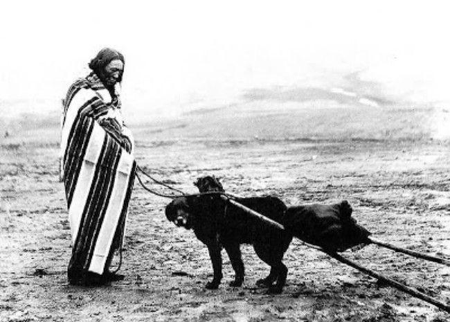 Lakota-Woman-And-Dog-Travois-Rosebud-Reservation-800x571