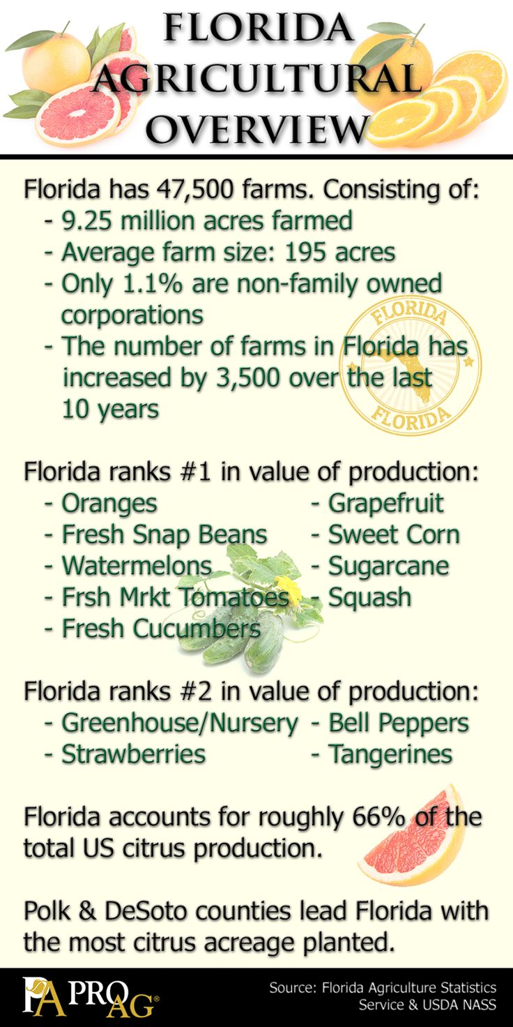 ProAg Friday Fun Ag Fact: Florida Agricultural Overview #Infographic