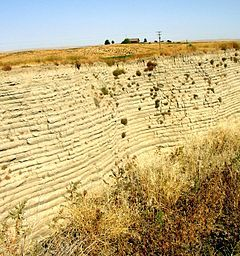 "Touchet beds in the ""Little Grand Canyon"" near Lowden in the Walla Walla valley. Note distinct layers."