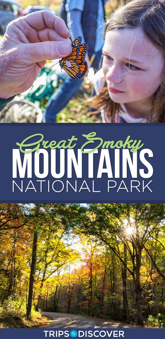 Discover Natural Wonders in Great Smoky Mountains National Park, NC