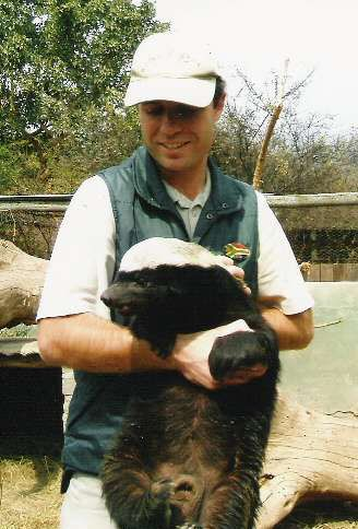 Marc & Stoffel the Honey Badger - www.marcholcroft.yolasite.com