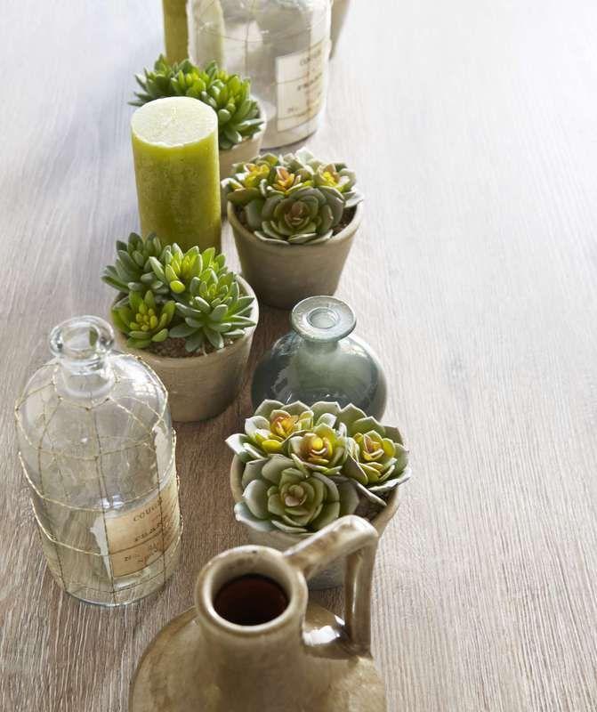 Combineer plantjes, potten, vaasjes & kaarsen en geniet binnen van buiten!