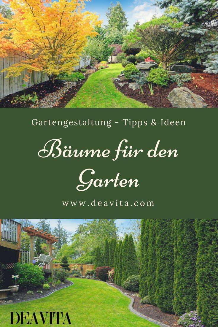 the 25+ best bäume für den garten ideas on pinterest   bäume für, Gartengerate ideen
